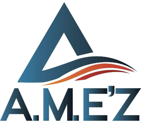 AMEZ Professional Moving Services  profile image