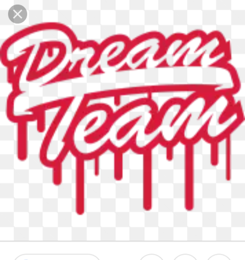 Dream Team Movers profile image
