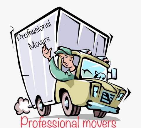 The Professionals Movers profile image