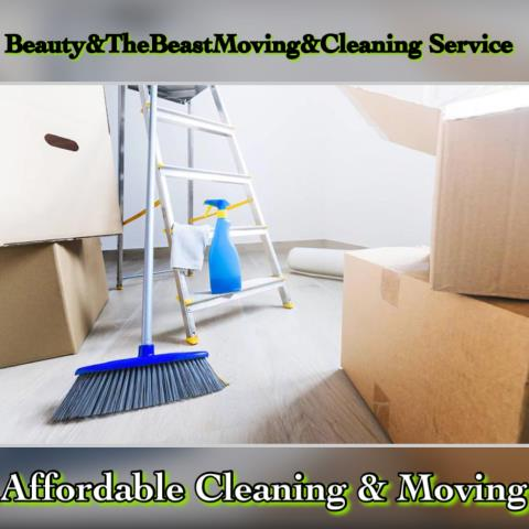 Beauty and The Beast ocd moving and cleaning service profile image